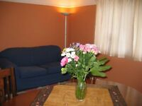 Luxury Self catering flat available for short-let _ near Addenbrooke's hospital