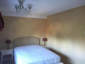 Spacious Double Bedroom to Rent in Reigate - Bills Inclusive
