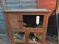 Double rabbit hutch with 2 rabbits and winter cover
