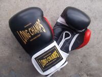 Long Champs Boxing Gloves
