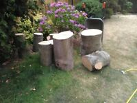 Logs for sale £80