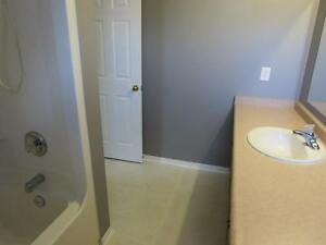 Beautiful 4BDRM Single Detached Home Located In East Galt Cambridge Kitchener Area image 9
