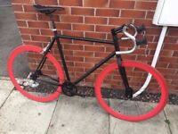 Single Speed/Fixed Gear Road Bike/ Fixie Bike