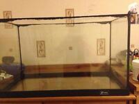 Fish Tank with filter and decorations