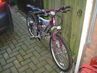 Childrens Bicycle 15 gears, sturdy, style'ish, robust now out grown