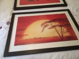 2 framed pictures of Africa scene