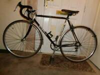 Ribble ( 531 ) vintage racing bike ( companolo )