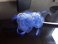 Organza band - head accessories from Debenhams