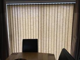 Hilary's vertical blinds