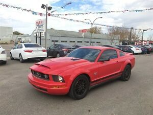 2009 Ford Mustang 45th Anniversary, leather