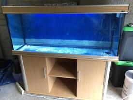 Large aquarium set up for sale