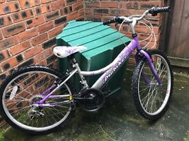2 Bicycles for girls