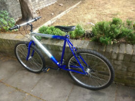 Men's bike Cascade Spectre bicycle - 22 Inches Frame