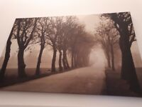 canvas wall art forest in sepia big size