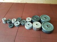 Home Gym Equipment For Sale - Bars, Plates, Benches and Racks!!!