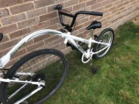Raleigh Avenir Tag 300 Tag-A-Long Trailer Bike - Great Condition