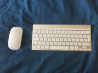 Apple bluetooth Magic Mouse and keyboard