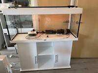Four foot juwel fish tank