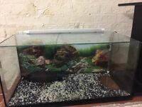 115l tank with stand, led, light and everything u need