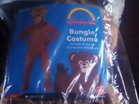 Bungle bear costume