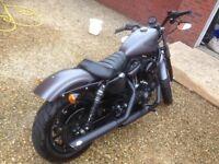 Harley Iron 883 Vance and Hines