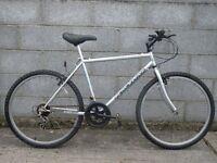 mens silver bike raceline 26''
