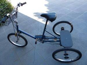 Tricycle Adult Warner Pine Rivers Area Preview