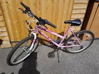 Mountain Bike - Women's