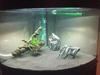 Fluval 190 litre corner fish tank and cabinet + extras £275
