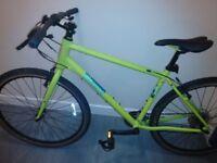 bike . Pinnacle Lithium . 2. model