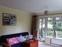 Bright and modren 2 bedrooms flat for rent close to the Anvenu Westbourne