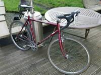 Dawes Street Cruiser Road Bike