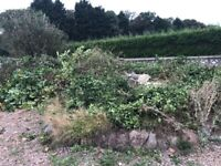 Garden waste removal wanted