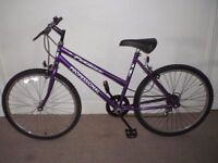 """Ladies/Womens Professional Paradise 19"""" mountain Bike (will deliver)"""
