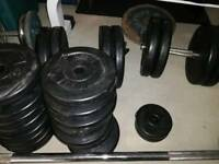 250kg weight bundle