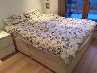 sturdy bedbase