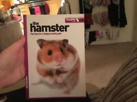 The hamster top tips for a happy healthy pet