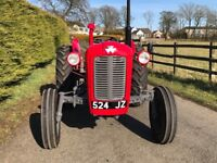1964 Massey Ferguson 35x 3 cylinder fully restored, credit card accepted, trade in considered.