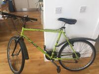 Mountain Bike - Men's Dawes 55cm frame with Schwalbe Winter Tyre