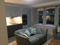 Gorgeous, spacious 3 Bedroom West End Flat North Kelvinside - available mid December