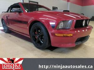 2009 Ford Mustang GT CALIFORNIA SPECIAL-WARRIORS PACK