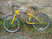 Youth's mountain bike with 21-speed shimano gears & alloy rims. (2 available)