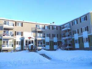 Ridgeview North and South - 2 Bedroom Apartment for Rent