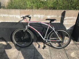 Silverfox Moutain bike