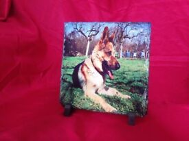 personalised rock slate. pet/family pictures. special events