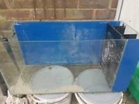 90 litre fish tank
