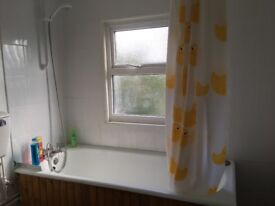Quiet room in a period two bedroom house to let