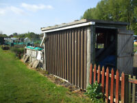 GARDEN - ALLOTMENT SHED 10 X 4