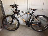 Indigo mountain bike