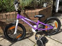 Specialized Hotrock 16 inch bike